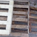 Blue Gum,  Pine,  Ply Wood palettes for Sale