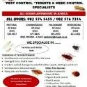 Pest Control - Pestatermite