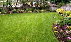 Ryan A Lawns & Landscaping!