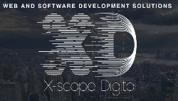 Web and software development services
